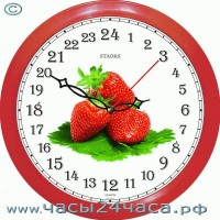 № 36-PKk - 24 часовые