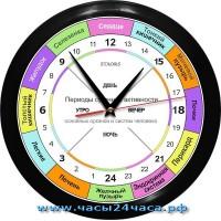 ROH-1-5 - 24 часовые